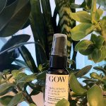 [REVIEW] Garden of Wisdom Alpha Arbutin 2% and Kojic Acid 1% Serum